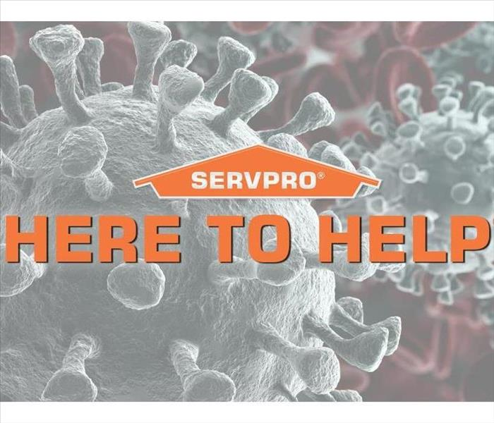 "SERVPRO logo on a photo of close up germs. ""HERE TO HELP"" is also on the graphic"