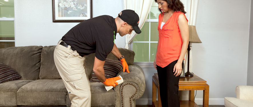 Glasgow, KY carpet upholstery cleaning